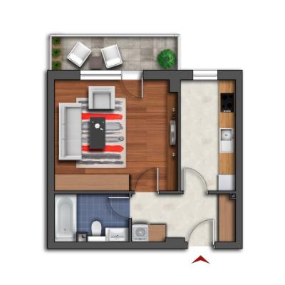 Apartamente 1 cameră